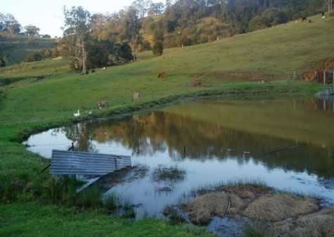 Barkeldine Farm Country Retreat - Kempsey Accommodation