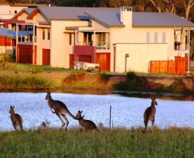 Grand Mercure The Vintage Hunter Valley - Kempsey Accommodation