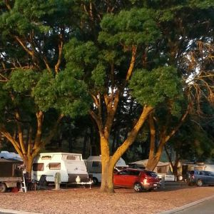 Queen Victoria Jubilee Park - Kempsey Accommodation