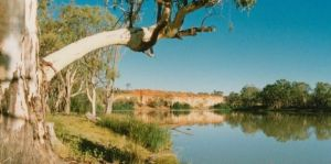 Border Cliffs River Retreat - Kempsey Accommodation