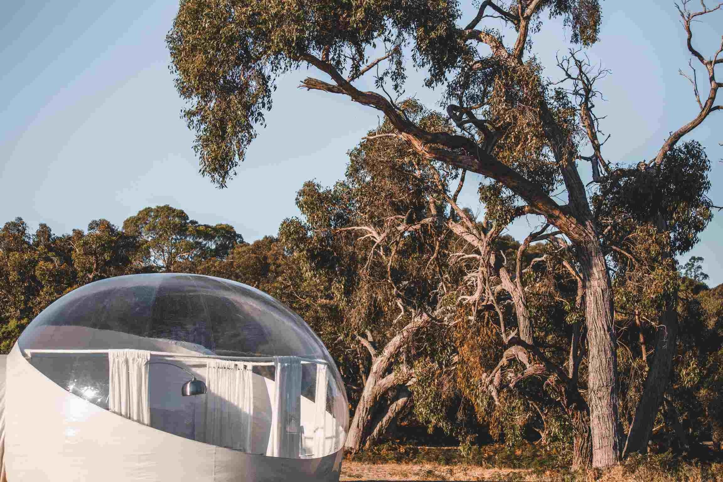 Coonawarra Bubble Tents - Kempsey Accommodation