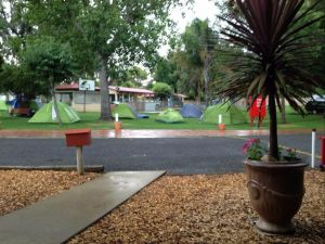 Young Caravan Tourist Park - Kempsey Accommodation