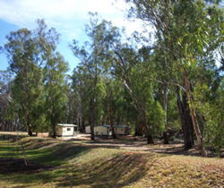 Balranald Caravan Park - Kempsey Accommodation