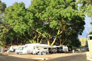Williamstown Queen Victoria Jubilee Park - Kempsey Accommodation