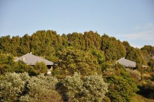 Tallaringa Views - Kempsey Accommodation