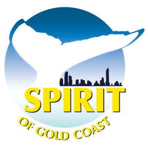 Spirit of Gold Coast Whale Watching - Kempsey Accommodation