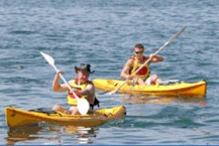 Manly Kayaks - Kempsey Accommodation