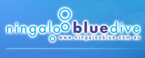 Ningaloo Blue Dive - Kempsey Accommodation