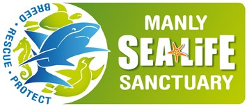 Manly SEA LIFE Sanctuary - Kempsey Accommodation