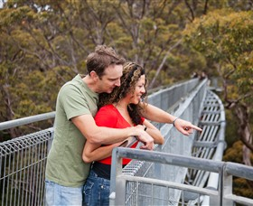Valley of the Giants Tree Top Walk - Kempsey Accommodation