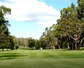 Cooma Golf Club - Kempsey Accommodation