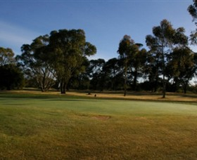 Winchelsea Golf Club - Kempsey Accommodation