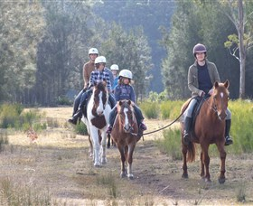 Horse Riding at Oaks Ranch and Country Club - Kempsey Accommodation