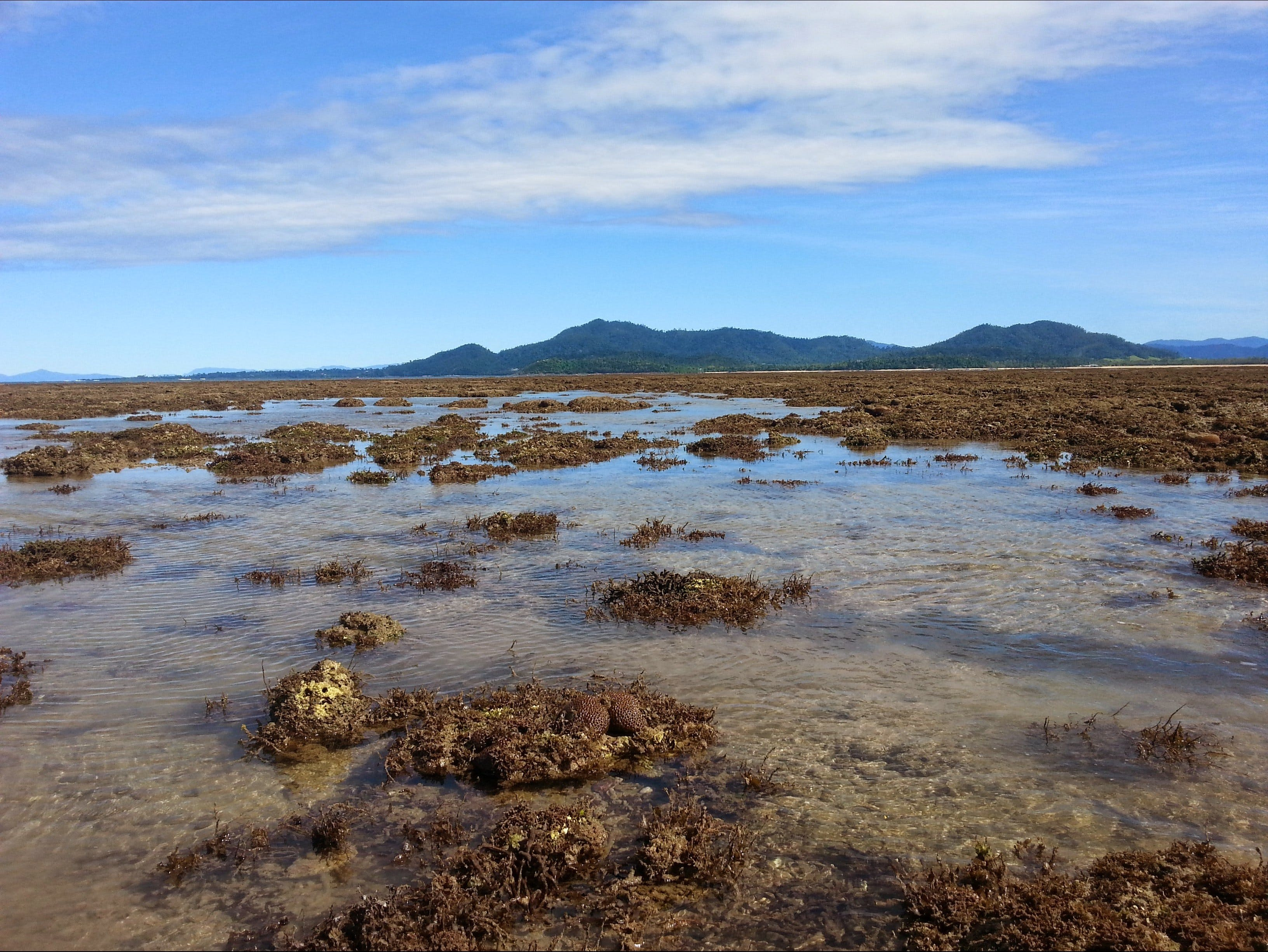 Walk to the Reef - Kempsey Accommodation