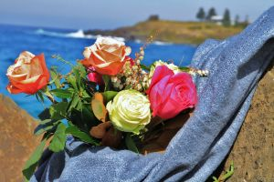 Roses by the Seaside National Rose Championships and Conference - Kempsey Accommodation