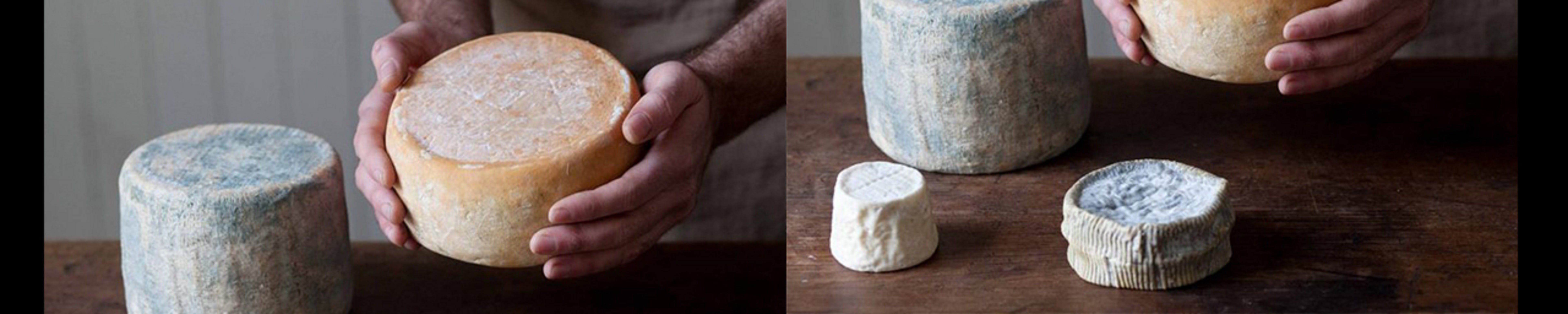 Cheese Making Basics Class - Kempsey Accommodation
