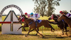 Mungery Picnic Races - Kempsey Accommodation