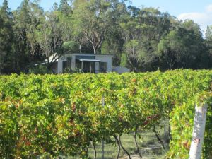 Just Red Wines Cabins - Kempsey Accommodation